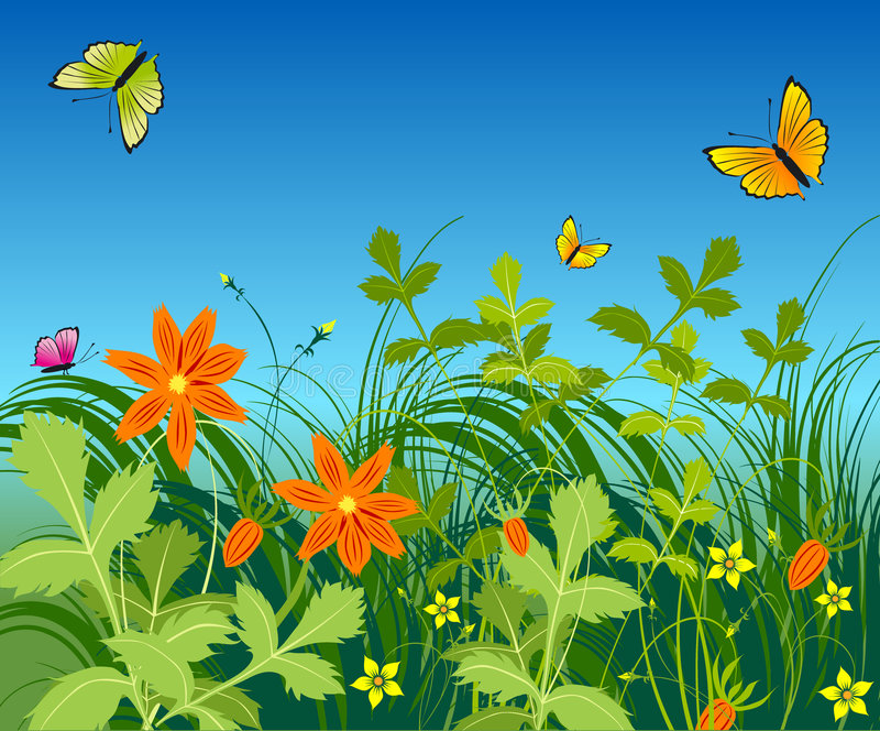 Flowers and butterfly vector illustration