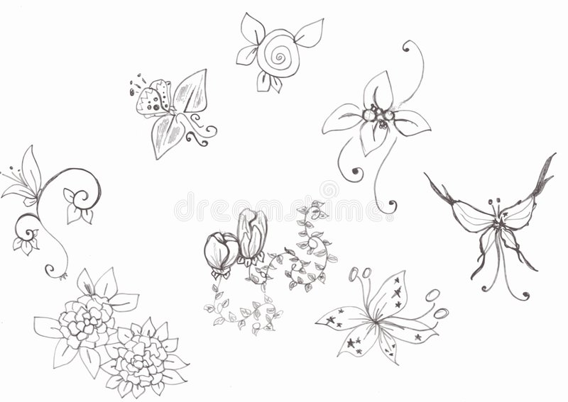Download Flowers and butterfly stock illustration. Illustration of rose - 7830536
