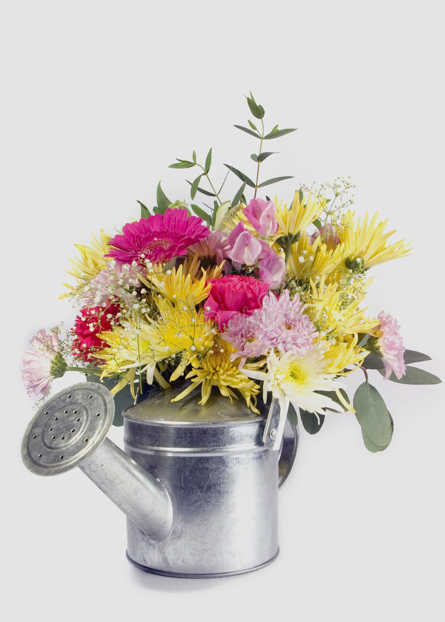 Flowers and can stock photo