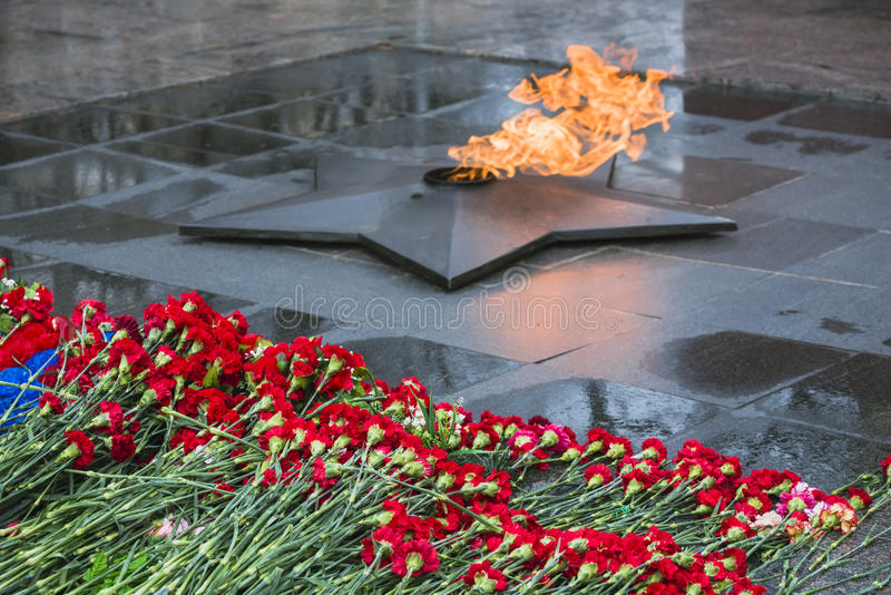 Flowers carnations put at the memorial eternal flame stock image