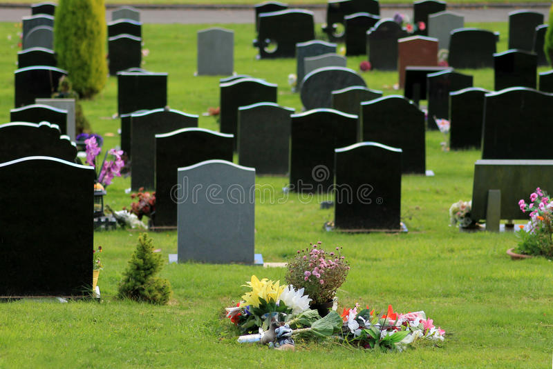 Download Flowers in cemetery stock photo. Image of markers, religion - 27365800