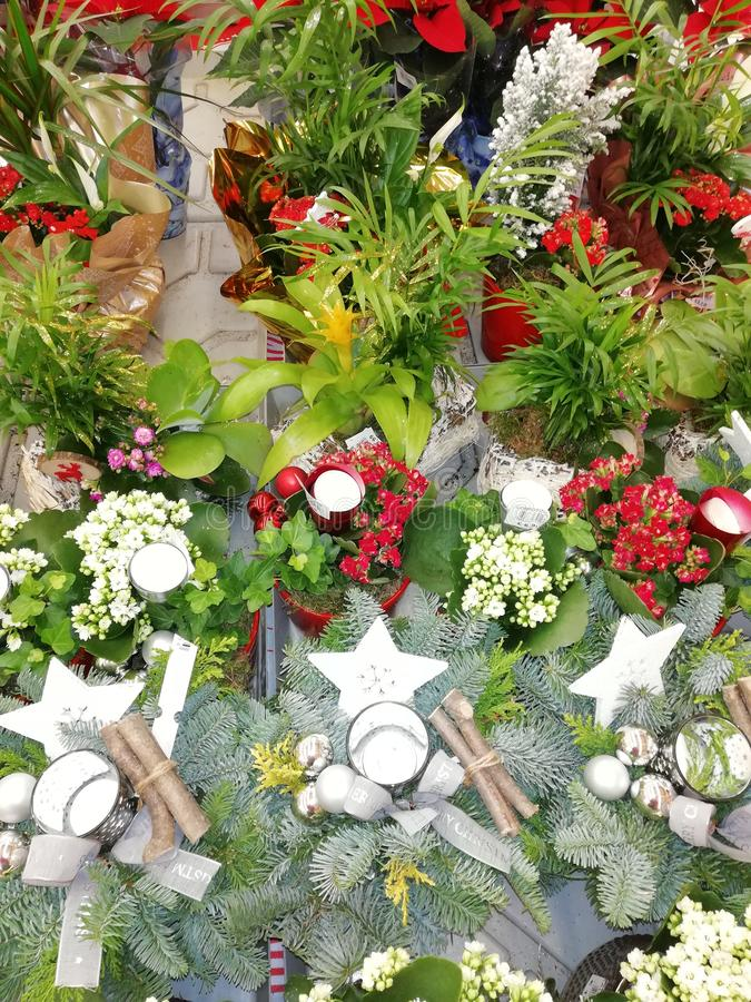 Floral decorations for Christmas stock images