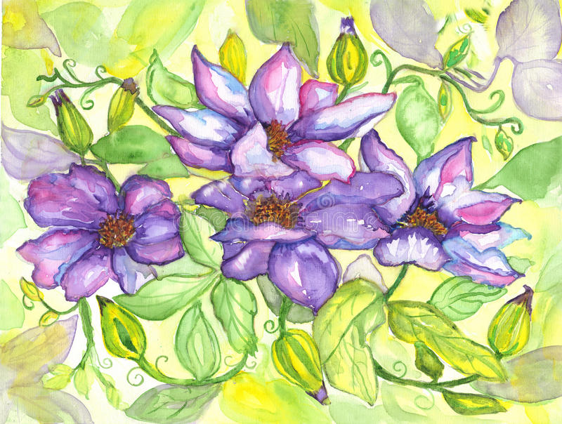 Download Flowers Clematis Watercolor Painting Royalty Free Stock Photo - Image: 32251955