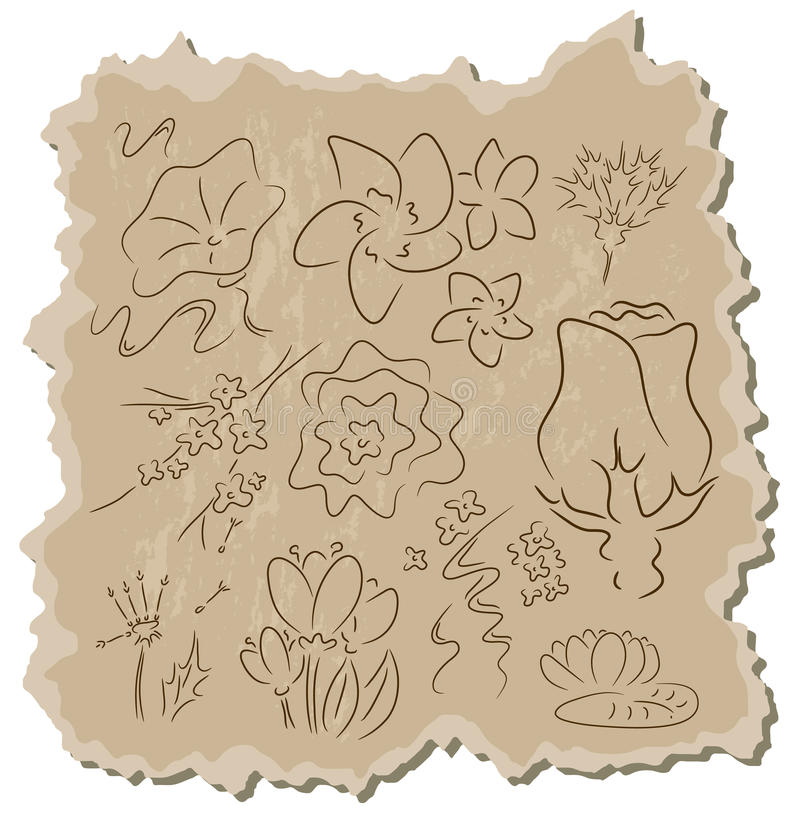Flowers collection royalty free illustration