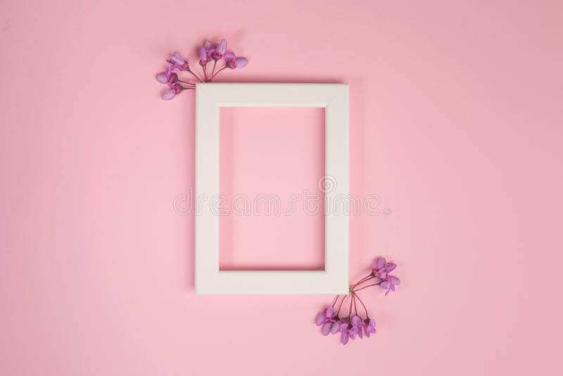 Flowers composition. Purple flowers and photo frame on pastel pink background stock image