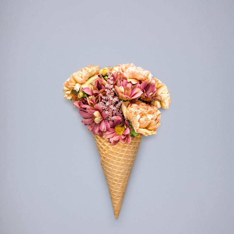 Flowers in cone. stock photos