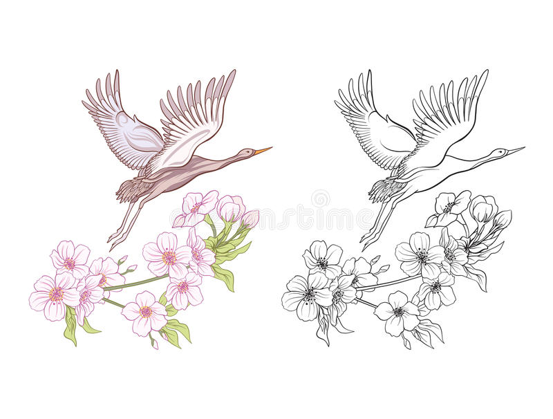 Flowers and crane. Set of colored sample and outline drawing. Outline hand drawing coloring page for adult coloring book.r Stock line vector illustration vector illustration