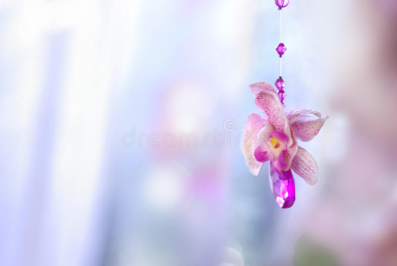 Flowers crystal beads decorative for wedding, background for car stock image