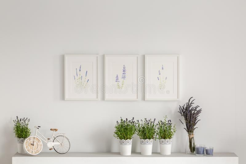 Flowers on cupboard against white wall with posters in minimal living room interior. Real photo stock image