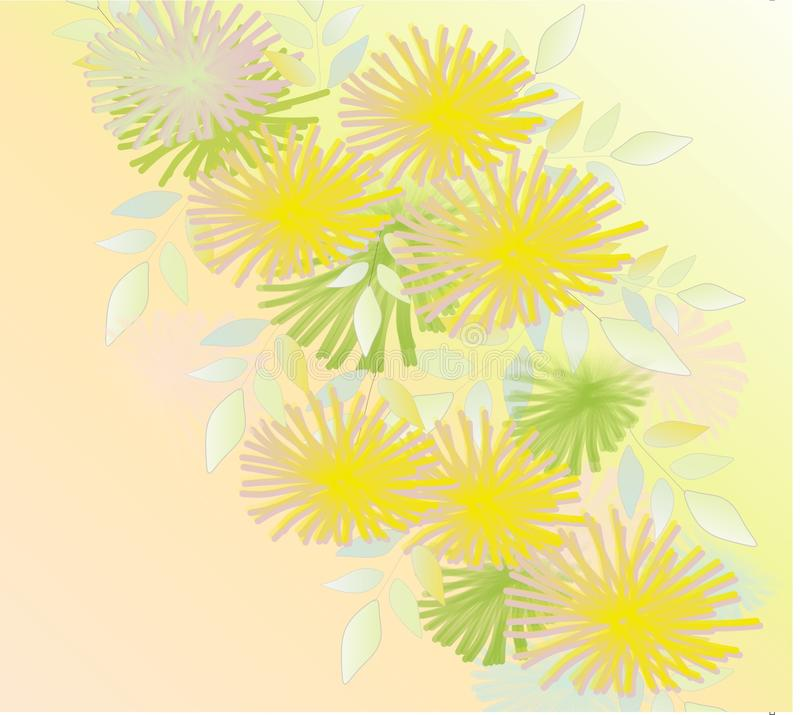 Flowers, dandelions, pale, beautiful, beautiful background for cards and business cards stock photo