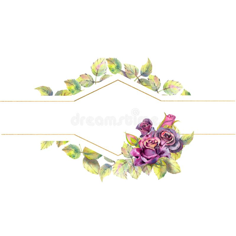Flowers of dark roses, green leaves, composition. Horizontal frame orientation . The concept of the wedding flowers vector illustration