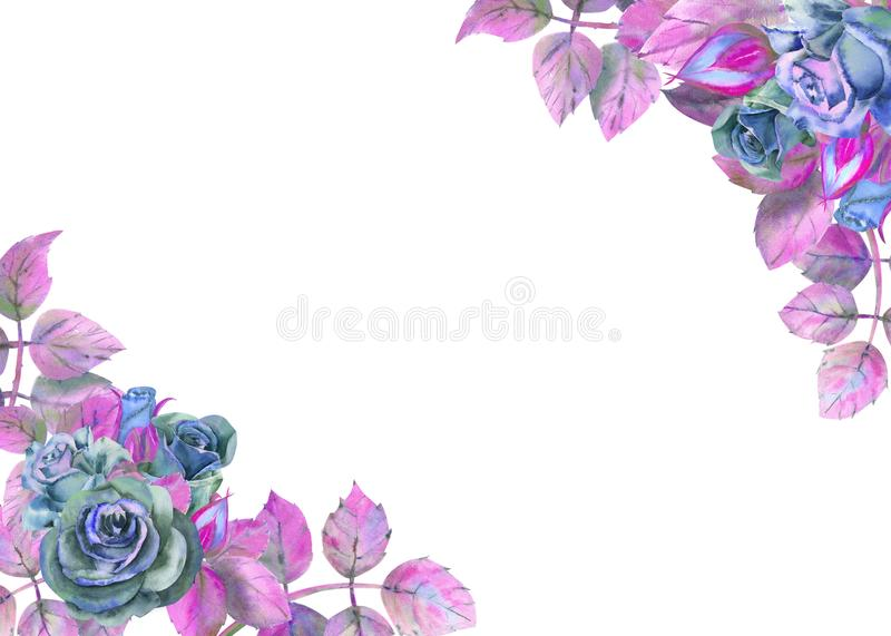 Flowers of dark roses, green leaves, composition. Horizontal frame orientation . The concept of the wedding flowers. Watercolor vector illustration