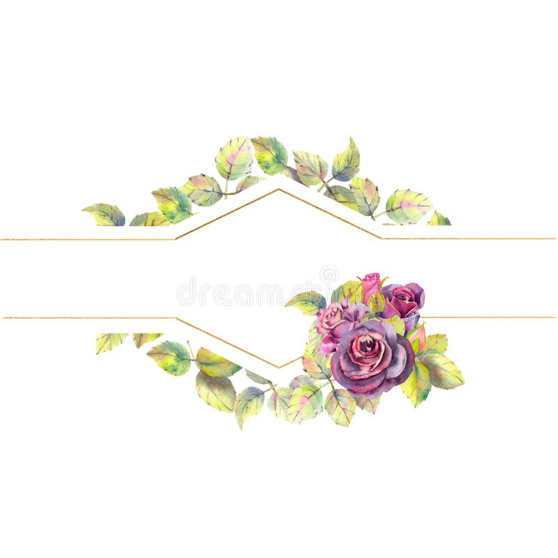 Flowers of dark roses, green leaves, composition. Horizontal frame orientation . The concept of the wedding flowers stock illustration