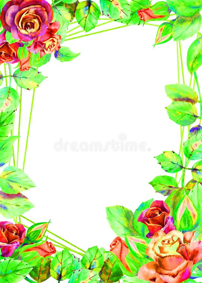 Flowers of dark roses, green leaves, composition.Vertical orientation of the frame . The concept of the wedding flowers stock illustration