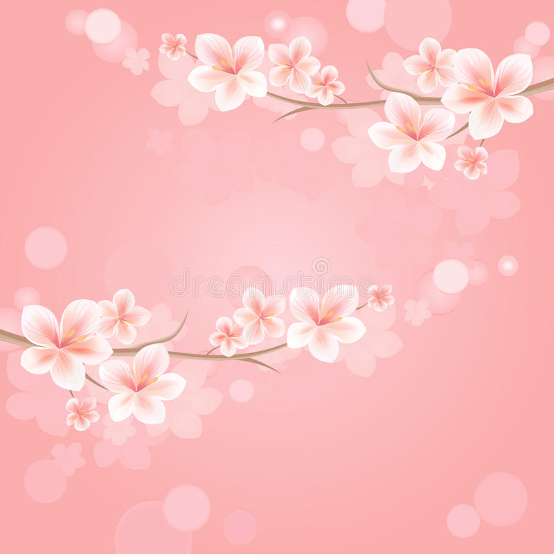 Flowers design. Branches of sakura with flowers. Cherry blossom on pink Bokeh Background. Vector EPS 10, cmyk royalty free illustration
