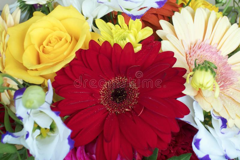 Flowers. Different flowers bouqet royalty free stock photos