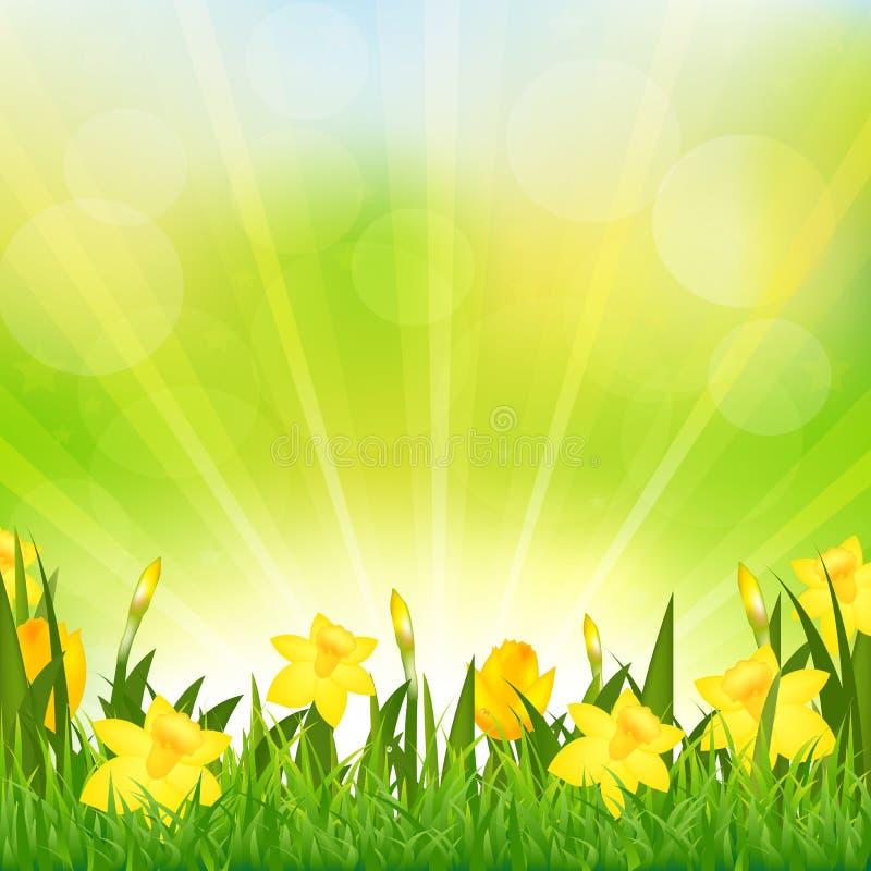 Flowers Easter Background. Vector Background vector illustration