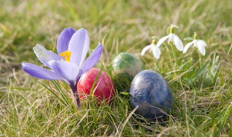 Flowers and Easter eggs stock photo
