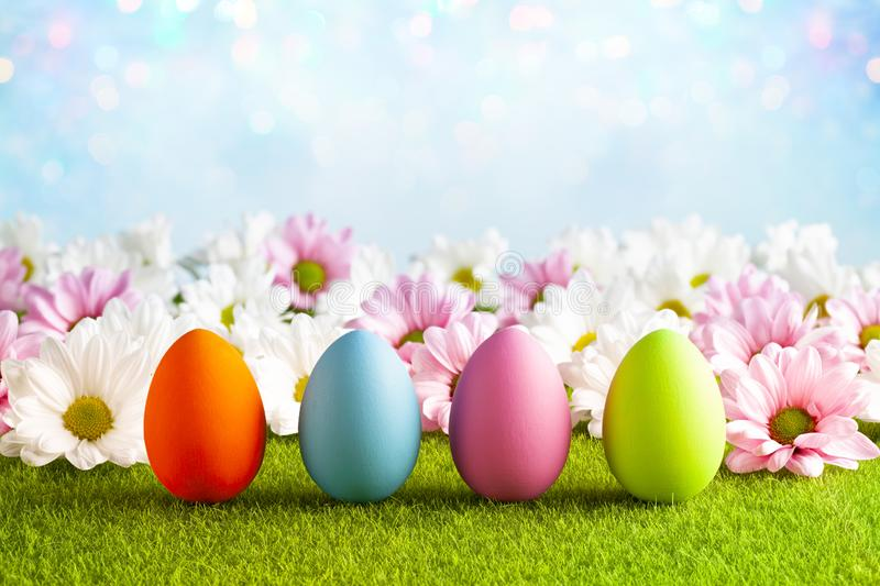 Flowers and Easter eggs on the grass and blue abstract background royalty free stock photo