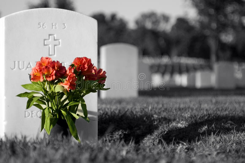 Flowers for the Fallen stock images