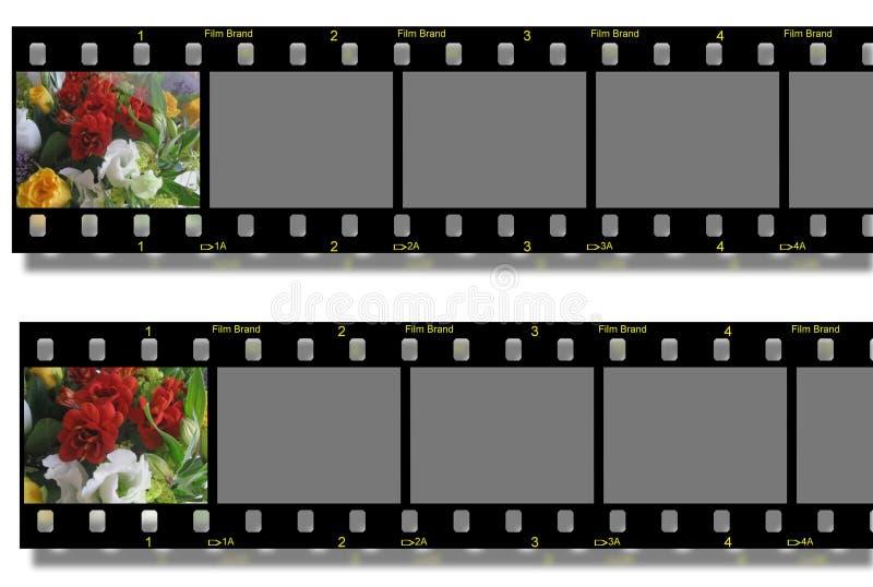 Flowers filmstrip royalty free illustration