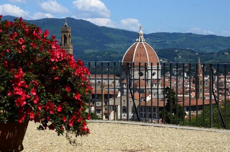 Flowers with Florence. Duomo Cathedral, Tuscany, Italy royalty free stock photography