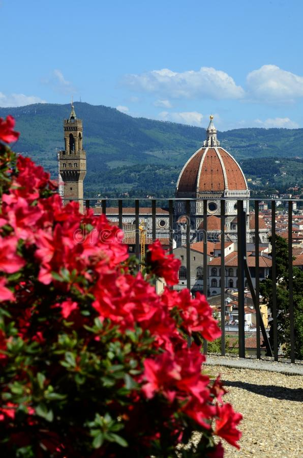 Flowers with Florence. Duomo Cathedral, Tuscany, Italy stock photography