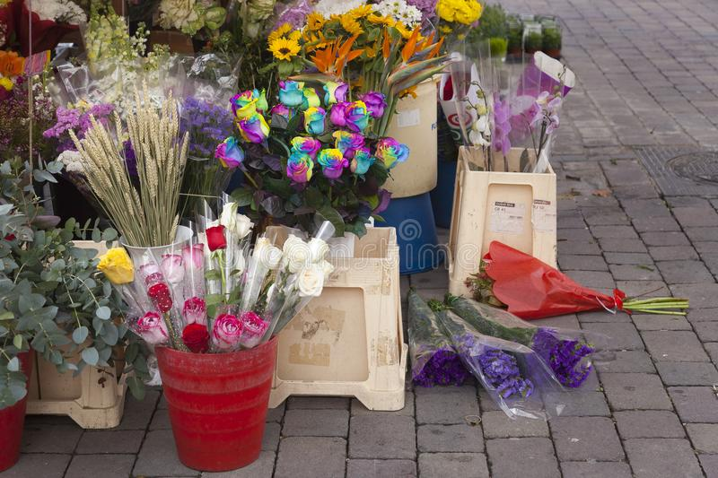 Color roses and other flowers. Flowers in a florist shop outdoors floor ready to be sold with a variety of pots with plants and prices in signets royalty free stock image