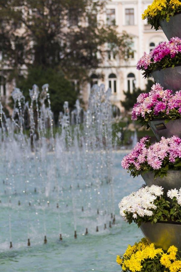 Flowers and fountain, Sofia, Bulgaria stock photography