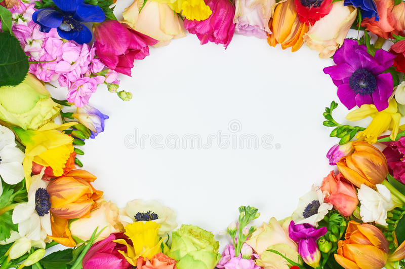 Flowers frame in white background isolated stock photography