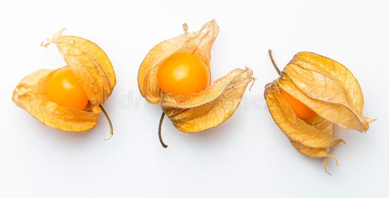 Flowers and fruits of Fisalis Physalis peruviana stock photo