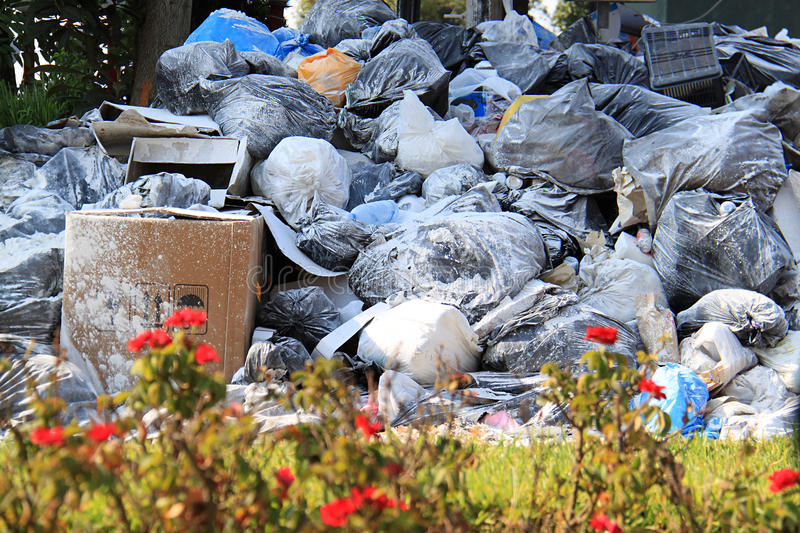 Flowers and Garbage. Piling trash in the streets in Lebanon. THis garbage crisis led to demonstrations against the government royalty free stock photo