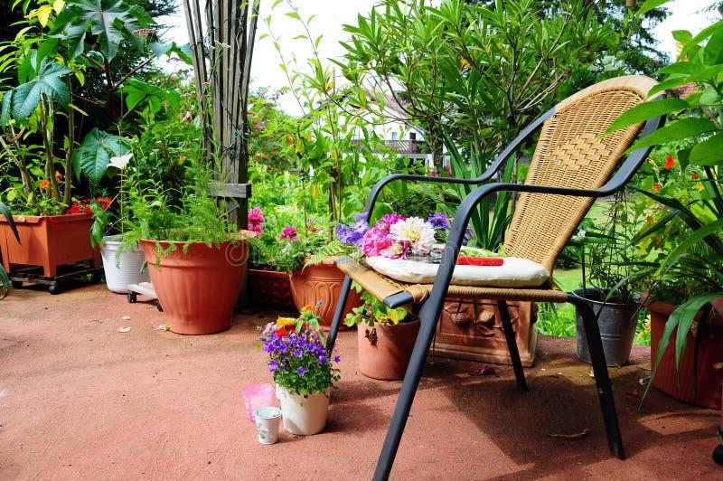 Flowers in the garden stock photos