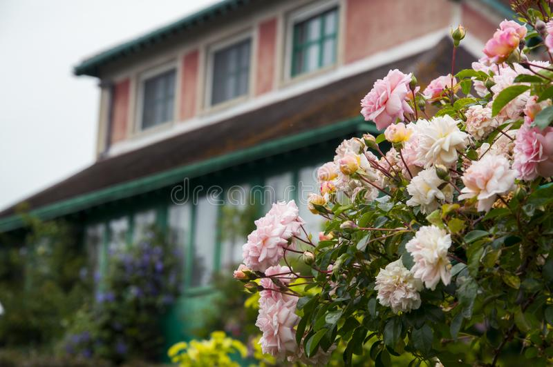 Flowers  in the garden in Giverny, Normandy, France and country house royalty free stock image
