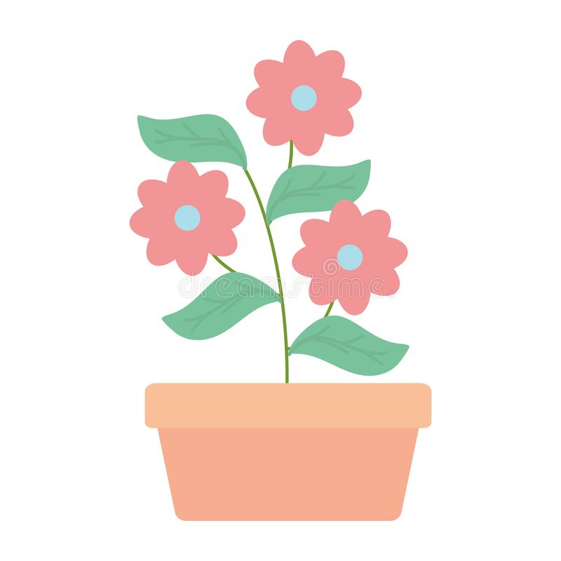 Flowers garden in square ceramic pot decoration. Vector illustration design royalty free illustration