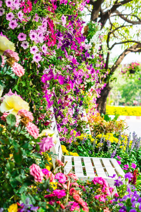 Flowers in the garden. White wooden chair in the flowers garden on summer stock images
