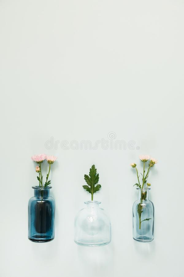 Flowers in glass vases stock images