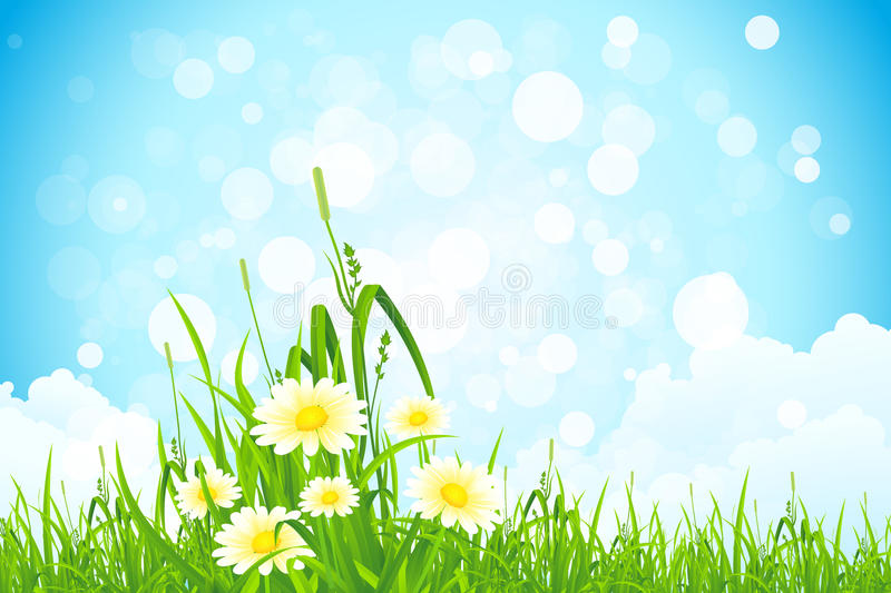 Flowers in the Grass stock illustration