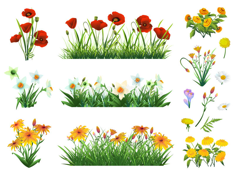 Flowers and grass set royalty free illustration