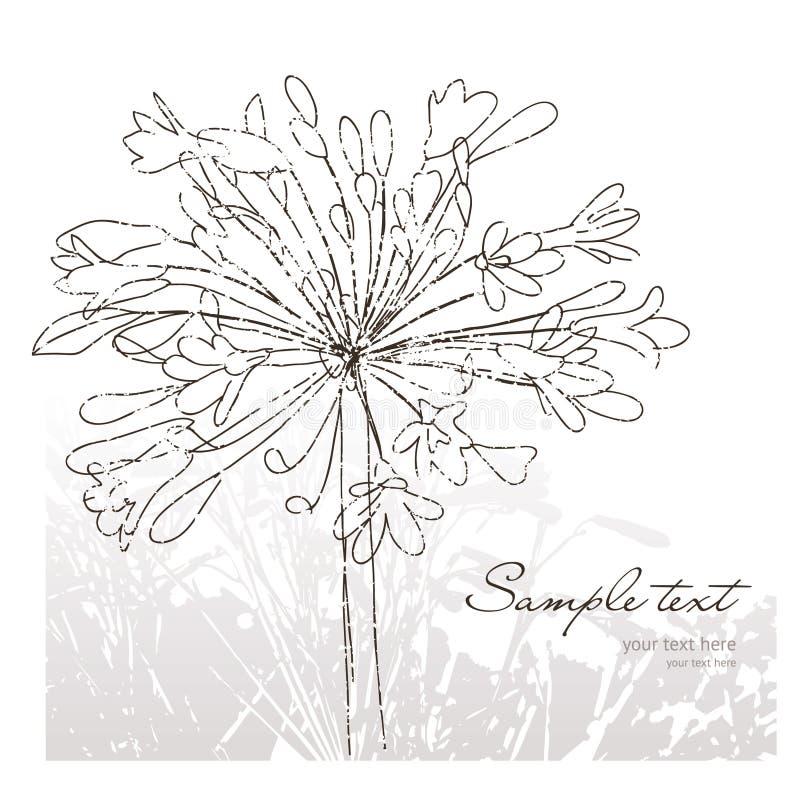 Flowers, greeting card vector illustration