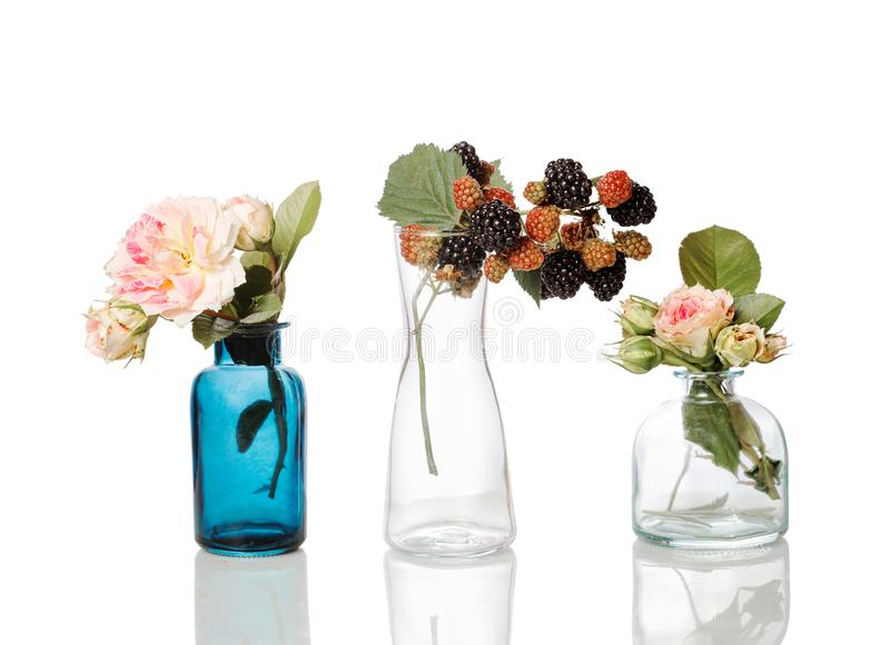 Flowers and herbs in glass bottles. Abstract flower bouquets in bottles isolated on white royalty free stock image