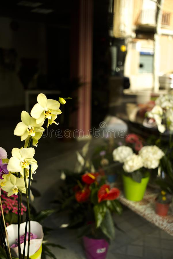 Flowers in hotel wedding royalty free stock photography