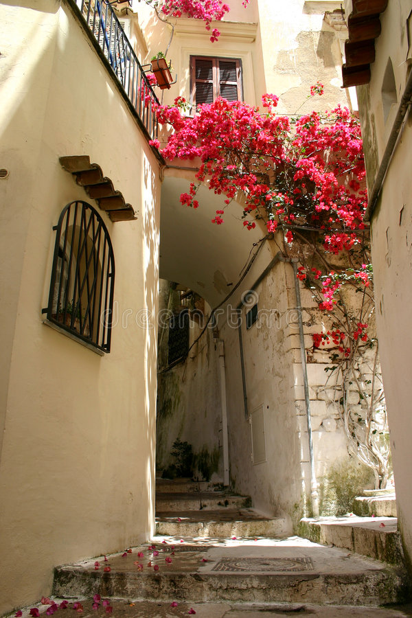 Free Flowers In Alley Royalty Free Stock Photos - 941318