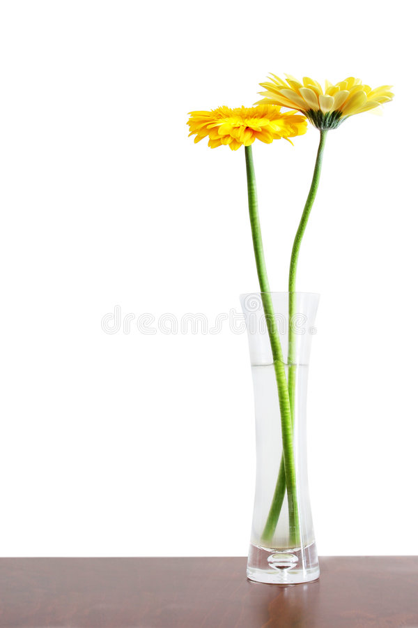 Free Flowers In Vase Stock Image - 574131