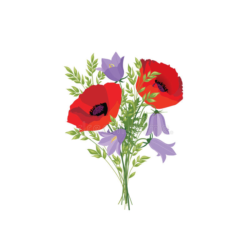 Flowers isolated. Floral summer bouquet. Meadow nature decor wit. H bluebells and red poppy vector illustration