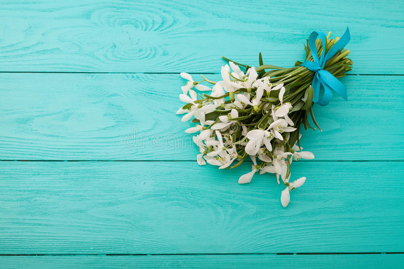 Flowers and lace ribbon on blue wooden background royalty free stock images