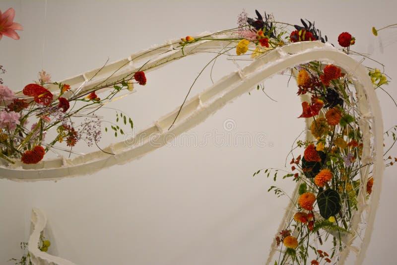 Flowers ladder stock image