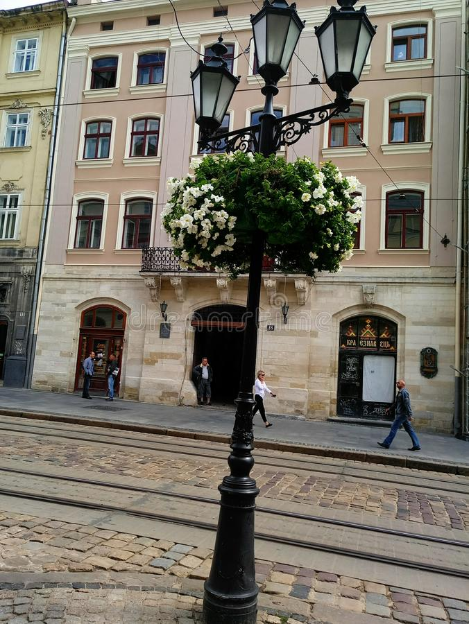 Flowers on lampposts& x29; royalty free stock images