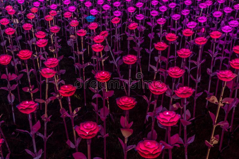 Flowers LED light decorations in Bangkok to celebrate the Coronation of King Rama X. Beautiful flowers LED light decorations at Sanam Luang ceremonial ground,in royalty free stock images