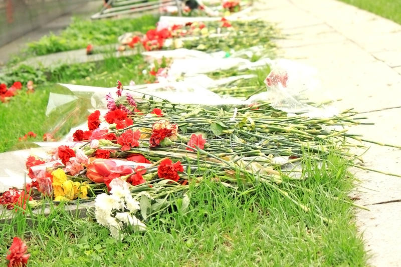 Download Flowers Lie On The Ground Royalty Free Stock Photo - Image: 25203455